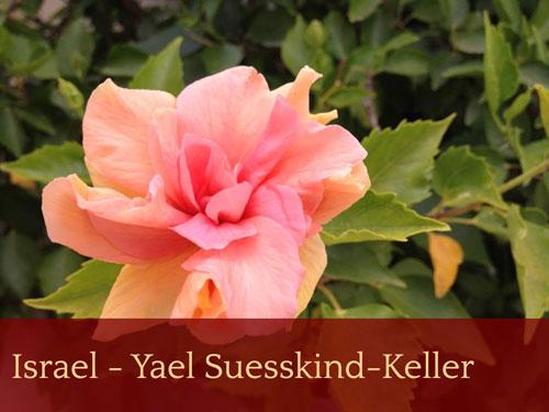 Israel - Yael Suesskind-Keller