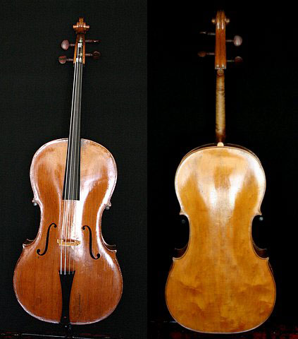 Castagneri cello